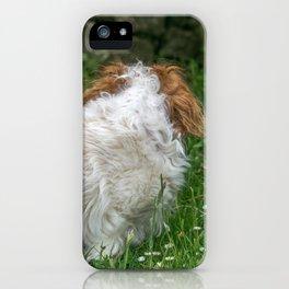 Cavalier King Charles Spaniel Dog iPhone Case