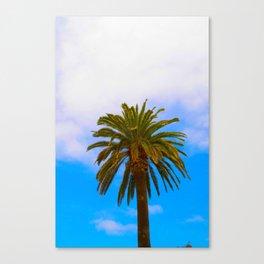 de Palm Canvas Print