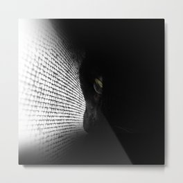 Loko's Dark Intentions: Dark Versus Light 1 Metal Print