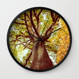 Stand in Awe Wall Clock