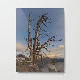 Alone But Standing Metal Print