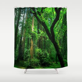 Enchanted forest mood II Shower Curtain