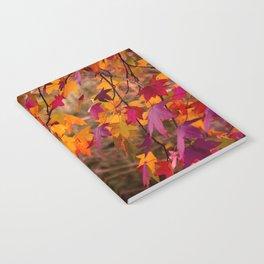 wonderful fall Notebook