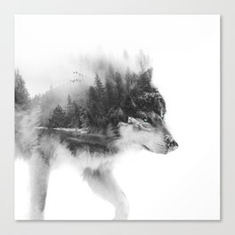 Wolf Stalking Canvas Print
