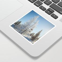 Snowy Tamaracks on a Sunny Day Sticker