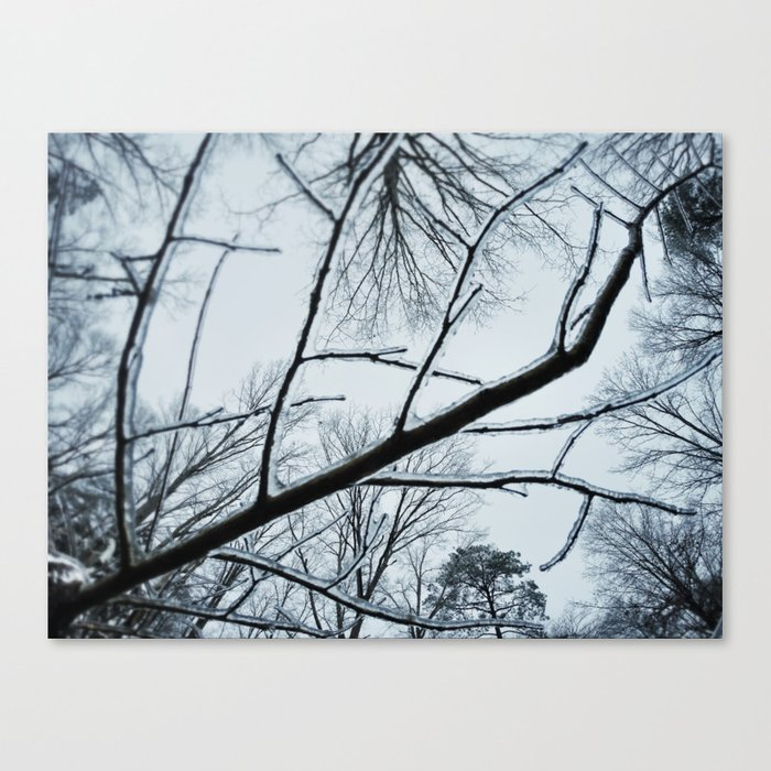 Little Ice Tree Canvas Print