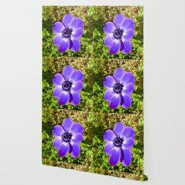 Purple Delight Wallpaper