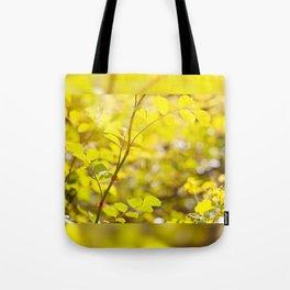 Wild roses prickles on twig Tote Bag