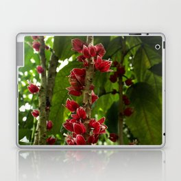 Red Flowers with Green leaf background Laptop & iPad Skin