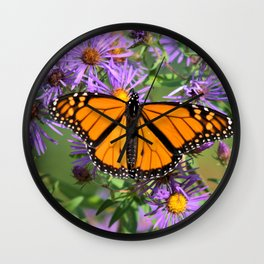 Monarch Butterfly on Wild Aster Flowers Wall Clock