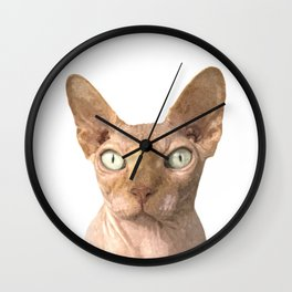 Sphynx cat portrait Wall Clock