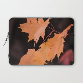 Colorful maple leaves Laptop Sleeve