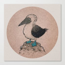 Just A Booby. Canvas Print