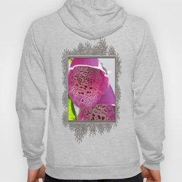 Digitalis named Excelsior Pink Hoody