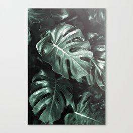 Monstera leaves, Palm Leaf Canvas Print