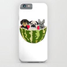 Watermelon Dogs iPhone 6s Slim Case