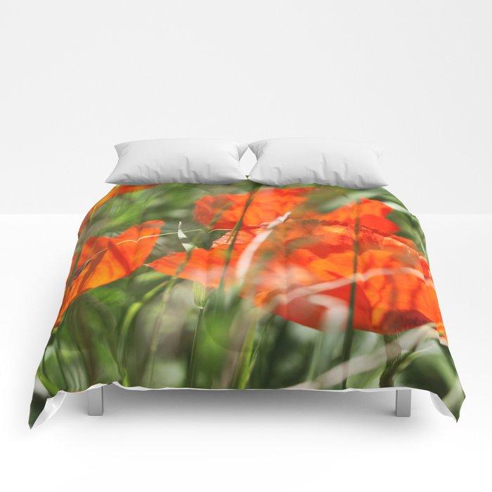 Poppy Comforters