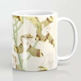 Grammangis ellisii 'Orchid' 1860 Coffee Mug