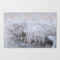 Heavy frosted  Canvas Print