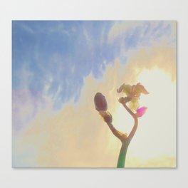 Iris410b Canvas Print