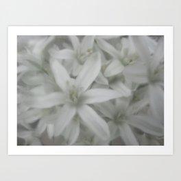 white and grey Art Print