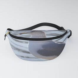 The Lookout Fanny Pack