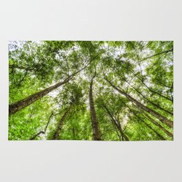 The Ancient Tree Canopy Rug
