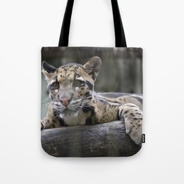 Wild Baby Leopard Tote Bag