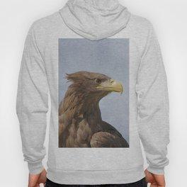 Tawny Eagle Hoody