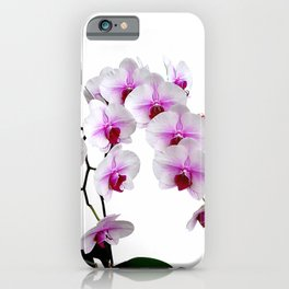 White and red Doritaenopsis orchid flowers iPhone Case