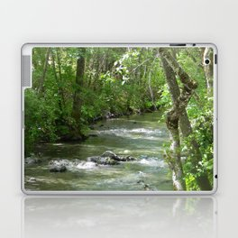 Peaceful moments.... Laptop & iPad Skin