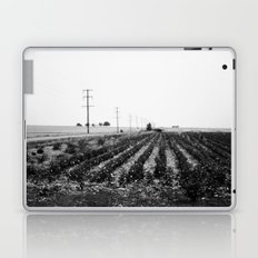 Field Laptop & iPad Skin