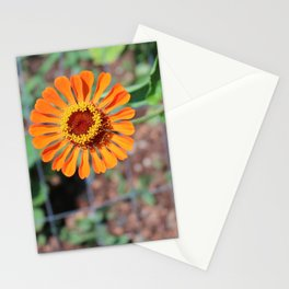 Flower No 5 Stationery Cards