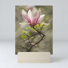 Blooming pink magnolia Mini Art Print
