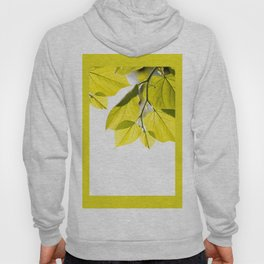 Twig with young green leaves on white Hoody