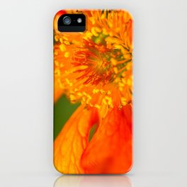Orange Macro Flower iPhone Case