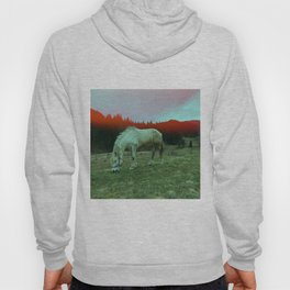 in the mountains Hoody