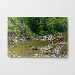Creek in the Forest Metal Print