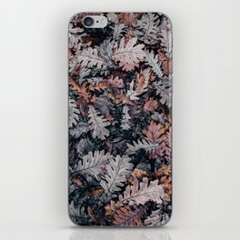 Dead Leaves iPhone Skin