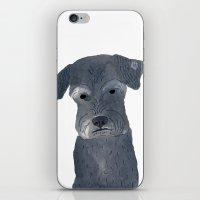 schnauzer iPhone & iPod Skins featuring Schnauzer by ITSUKO SUZUKI