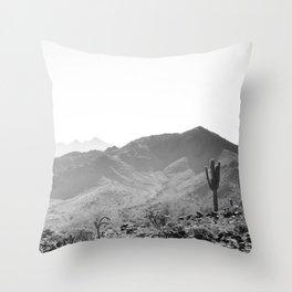 Arizona Desert Throw Pillow
