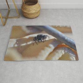 Clip Spider Rug