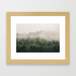 Forest Fog Photography | Woods | Misty | Mist | Forest Dew | Kaszuby Canada | Nature Photography Framed Art Print