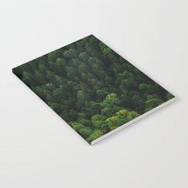 Swiss forest Notebook