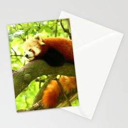 Chilling Red Panda Stationery Cards