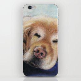 Sweet Sleeping Golden Retriever Puppy by annmariescreations iPhone Skin