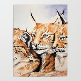 The Lynx Family Watercolor (Color) Poster