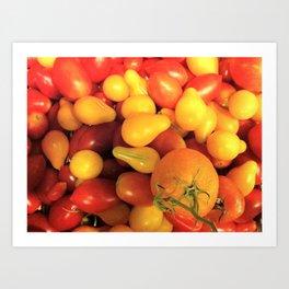 Tomatoes #1 Art Print