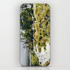path to the beach iPhone & iPod Skin