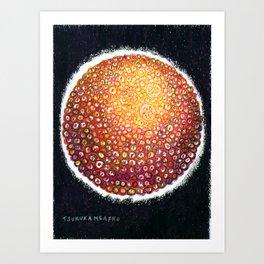Zoshoku 2-XVII Art Print